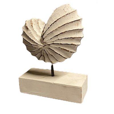 decoratiune exotic shell